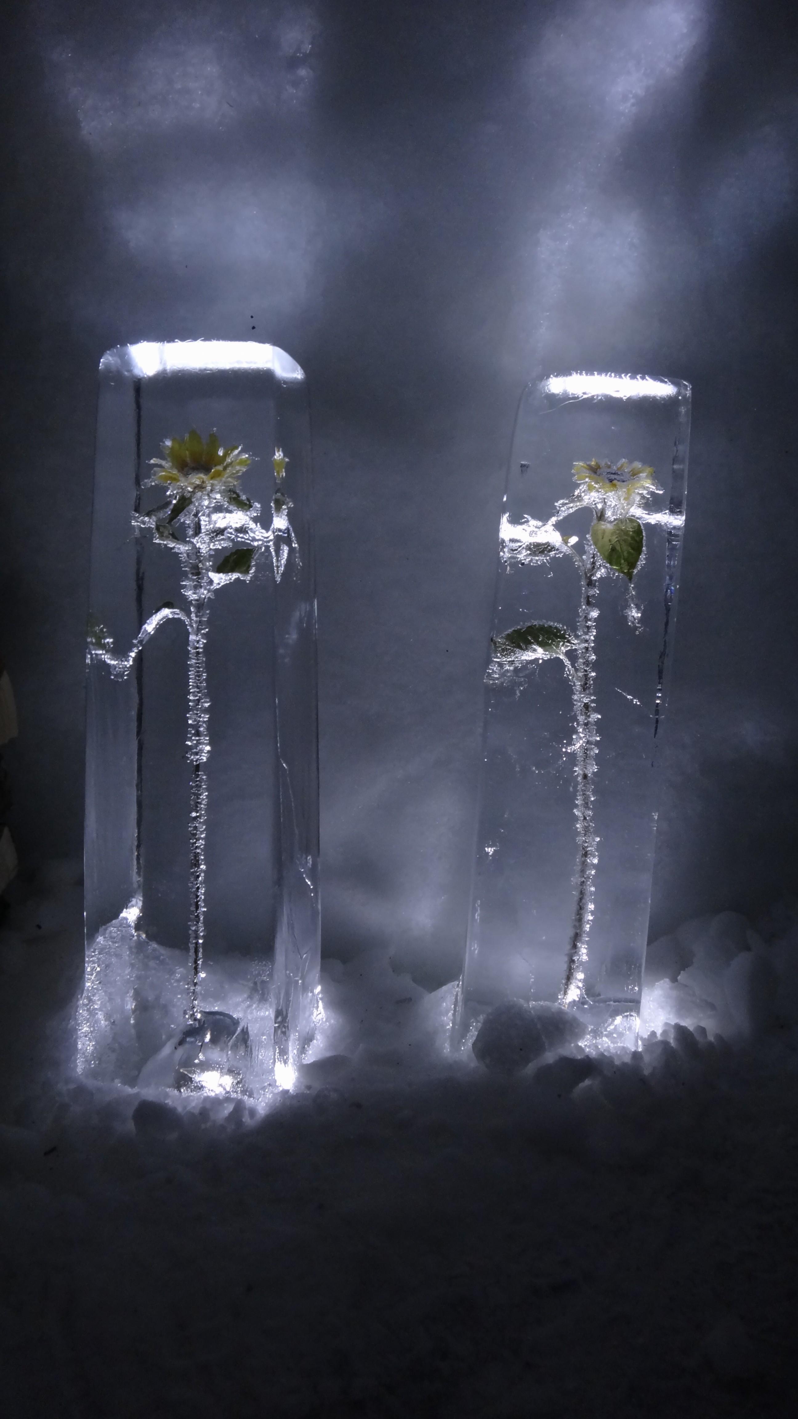 Ingevroren bloemen aan tafel