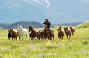Montana 7 Foto Donnie Sexton